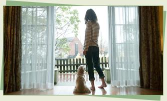 いつでもどこでも愛犬と一緒に